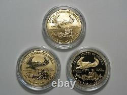 2006-W American Gold Eagle 20th Anniversary 3 Coin Set with Proof & Reverse Proof