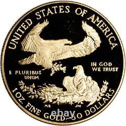 1989-w Américaine Gold Eagle Proof 1 Oz 50 $ Ogp